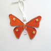 Sunset coral butterfly 081